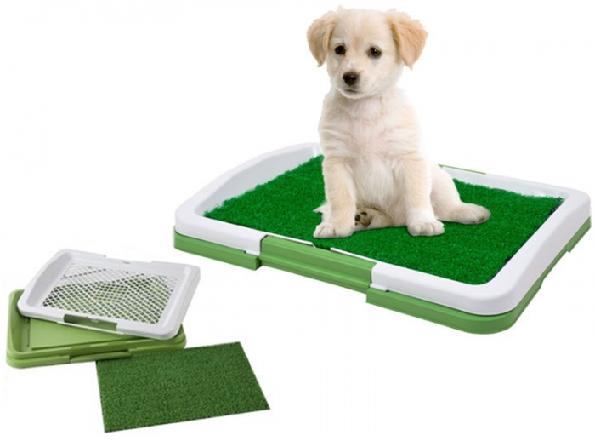 Psia toaleta - Puppy Potty Pad